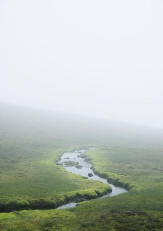 Misty spring