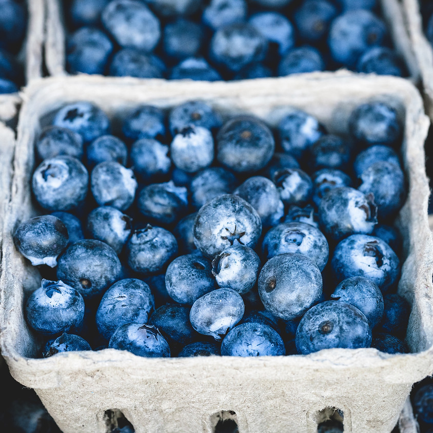 HVO BLUESberries Fest