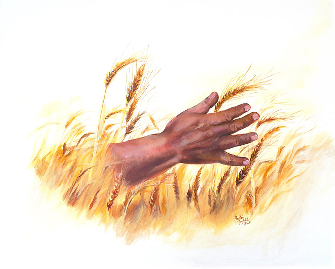 POSTER- The Harvest     12 W x 18 H      Inches