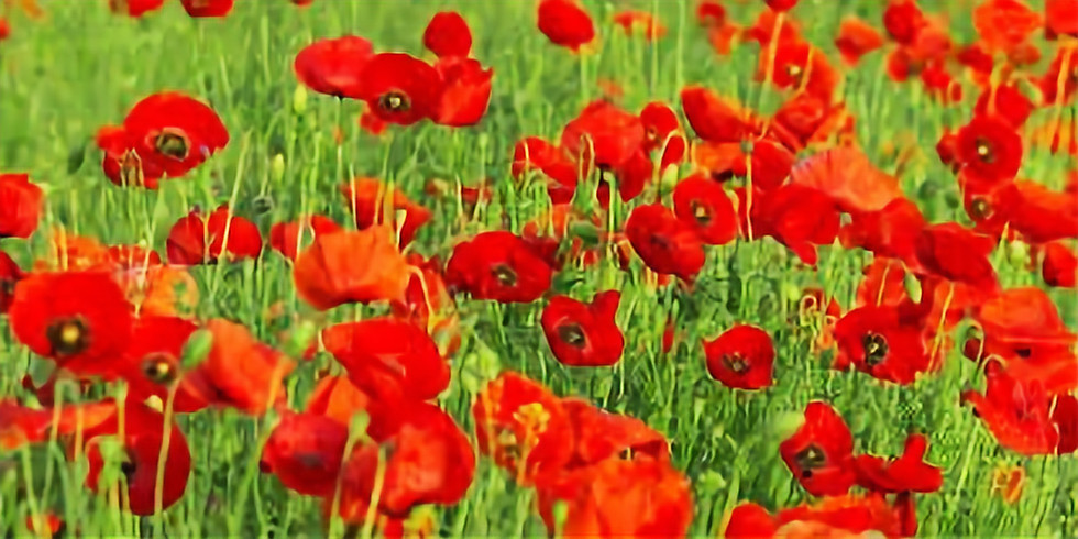 Harworth Brass Concert of Remembrance