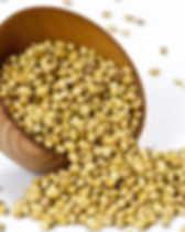 coriander-seeds-1S-670.jpg