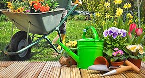 lawn-garden-large.jpg