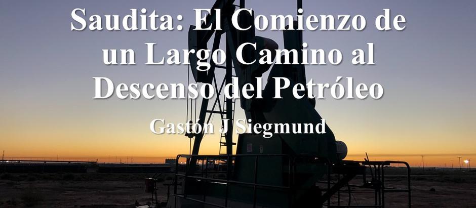 Rusia VS Arabia Saudita: El Comienzo de un Largo Camino al Descenso del Petróleo; Gastón J. Siegmund