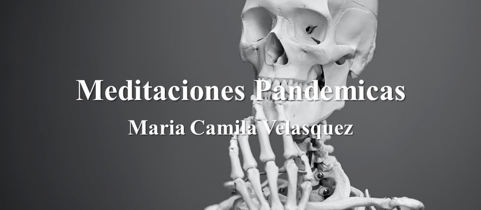 Meditaciones Pandemicas; Maria Camila Velasquez