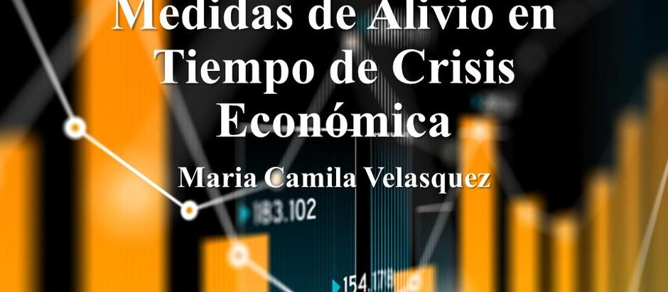 Medidas de Alivio en Tiempos de Crisis Económica; Maria Camila Velázquez