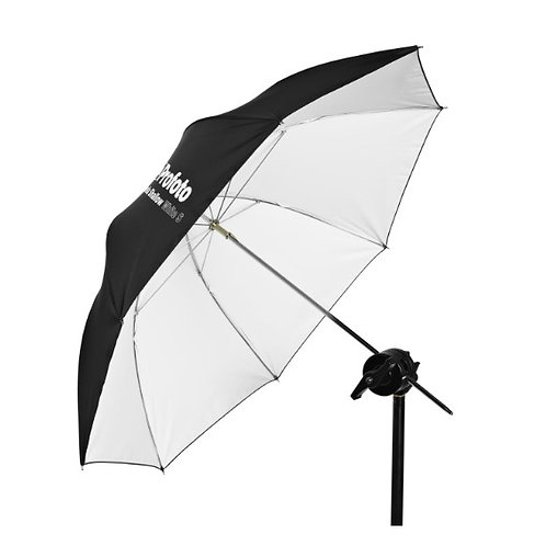 Umbrella Shallow White