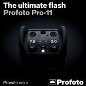 Profoto Pro-11