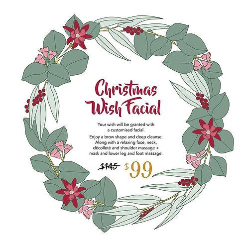 Christmas Wish Facial