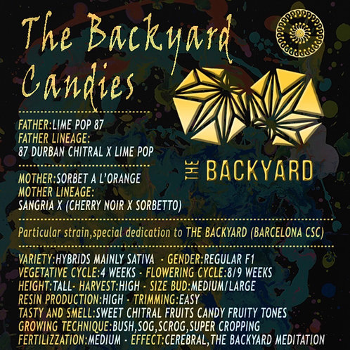 The Backyard candies