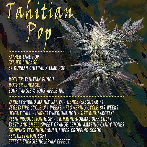 Tahitian Pop