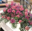 Kistepynt lyserøde roser pink gerbera