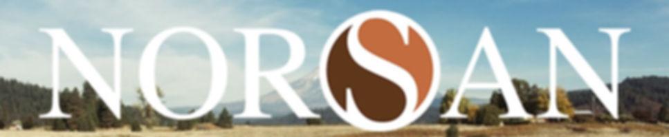 NORSAN-logo-whit-font_edited.jpg