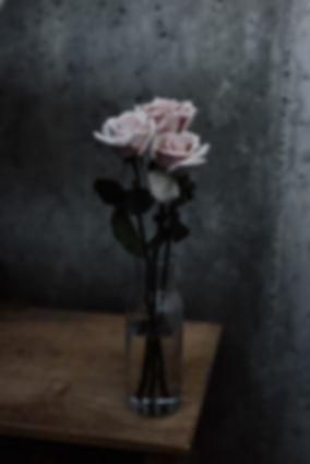Roses - Priscilla Du Preez.jpg