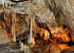 Medvedi jeskyne