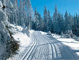 orlicke hory jiraskova cesta
