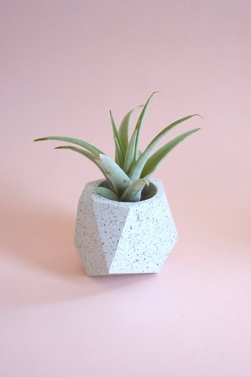 Terrazzo geometric planter, minimalistic pot, available standing or hanging