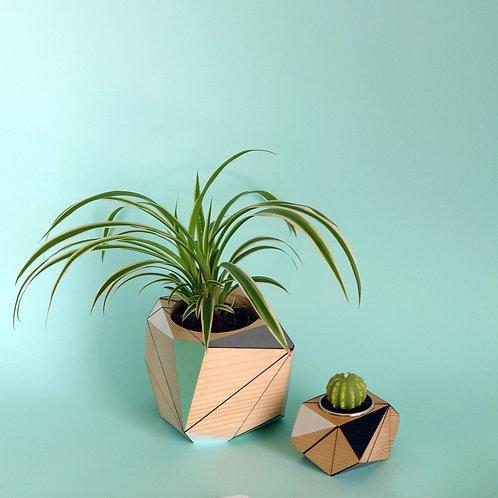 Turquoise Planter