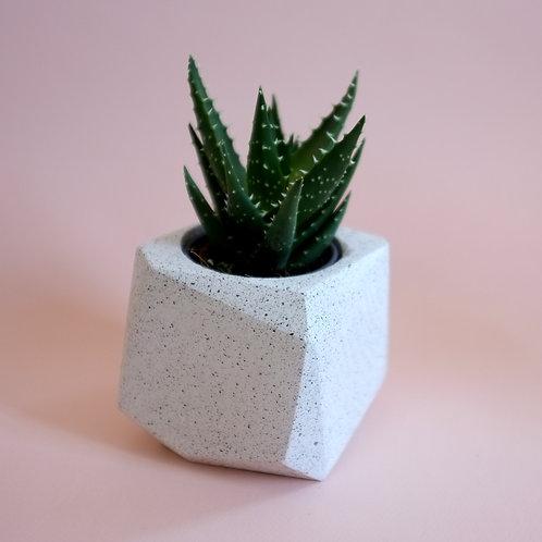 Terrazzo geometric planter, minimalistic storage pot