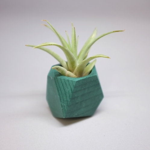 Forest green geometric planter, minimalistic pot, available standing or hanging