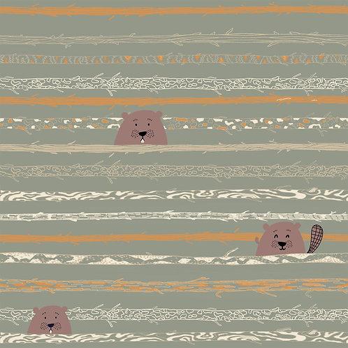COTONE P83 castori