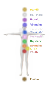hal-lai 12 Chakra Centers on the human body