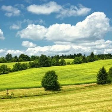 Přednáška 1000 + 1 cesta pro krajinu aneb patříme do přírody