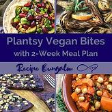 Plantsy Vegan.jpg