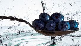Açaí and Maqui Berries – Create Your Berry Strategy Today!