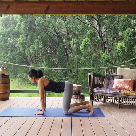 Yoga-Cow Pose