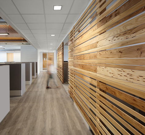 Wood Wall Open Office