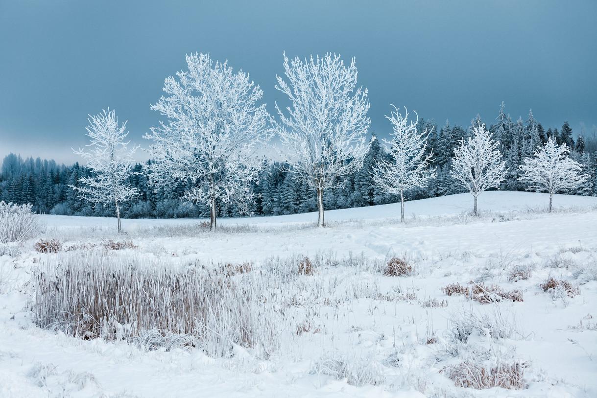 Winter Landscape, Vestiena, Latvia