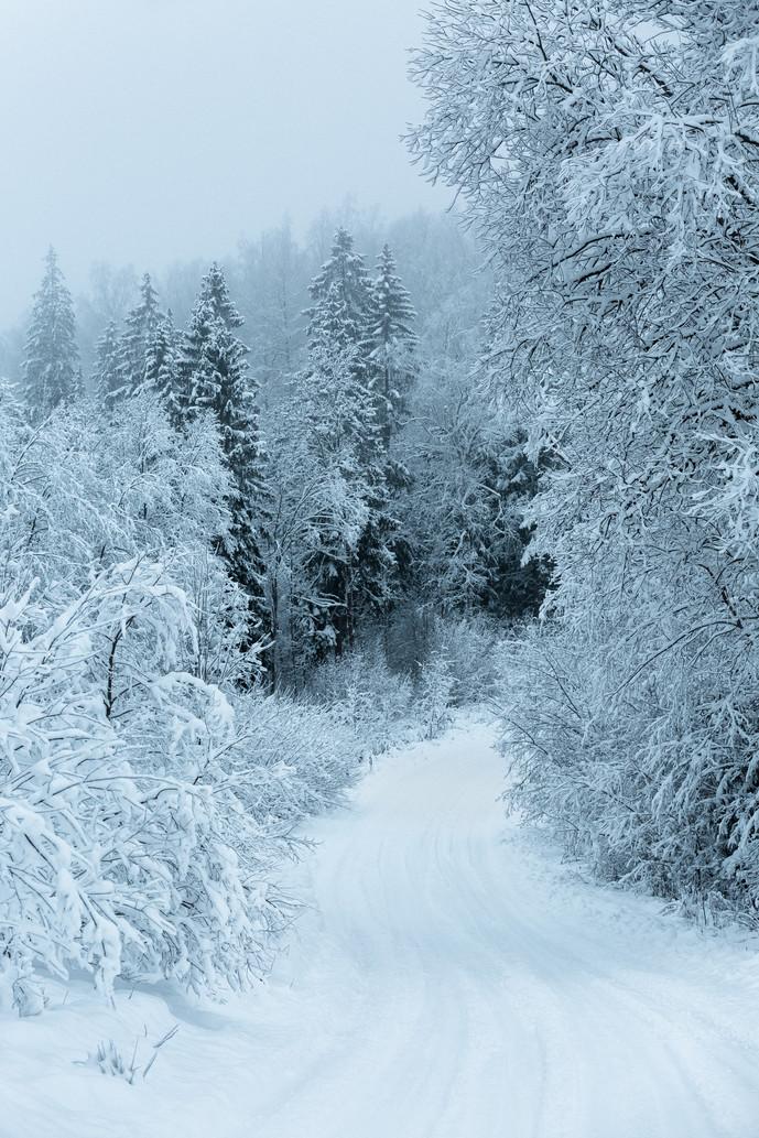 Winter Road, Vidzeme, Latvia