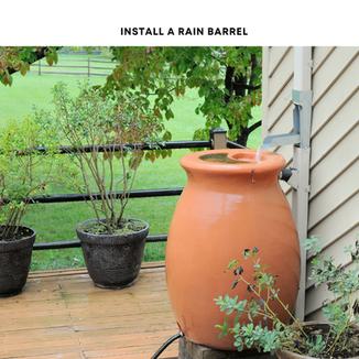 Install a Rain Barrel