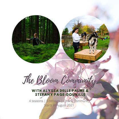 Bloom Community - IG.png