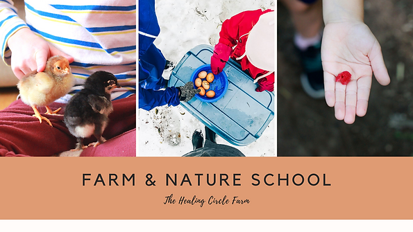 Farm School cover.png