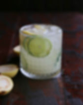 gin fizz_edited.jpg
