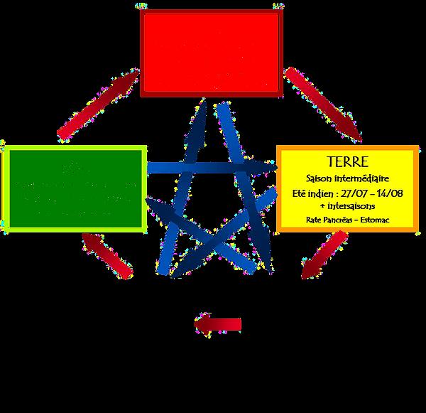 Cycles des loges MTC