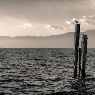 La pace sul Lago di Garda