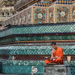 Il sapere del monaco