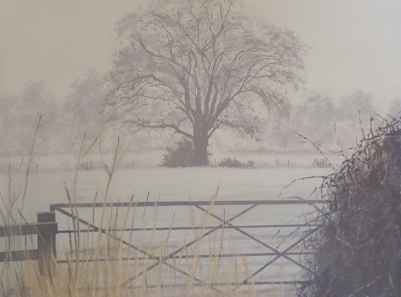 Frosty Morning Whiteparish