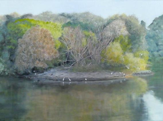Bird Refuge, Dowse Lagoon
