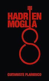 Hadrien Moglia guitariste flamenco