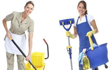 Empresa de Limpeza Domestica - Analia Franco, Tatuape, Carrao, Penha, Santana, Vila Leopoldina, Alph