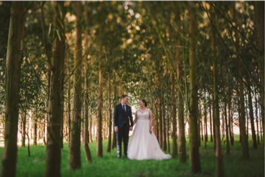 Wellington Weddings