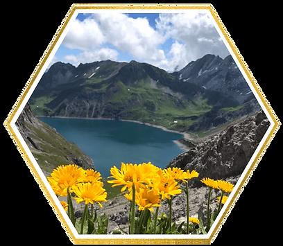 lalinda-alpine-water-skincare-2-2.png