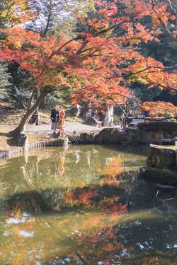 滋賀県彦根市の玄宮園での結婚式前撮り
