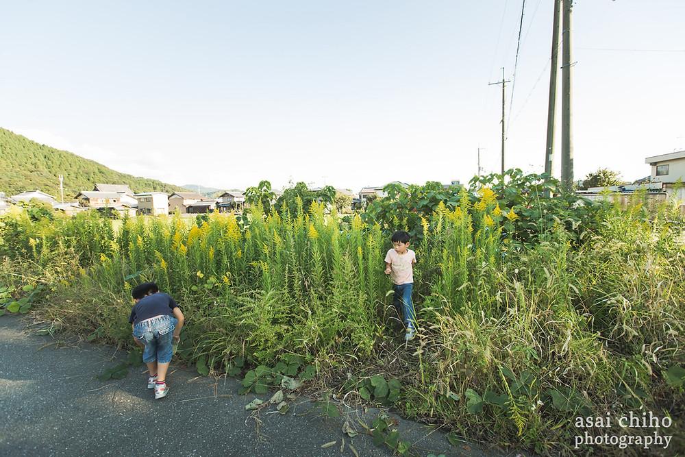 デイキャンプとご自宅写真撮影 | 滋賀県長浜市木之本 | 秘密基地編