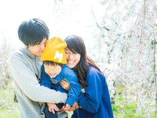 家族写真とストライダー | 桜の季節 | 京都府立植物園