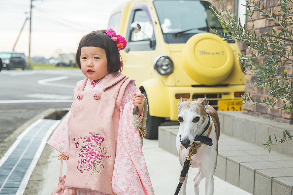 滋賀県犬上郡多賀町の多賀大社で七五三お参り出張撮影