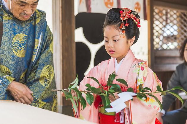 浅井のブログ七五三のご祈祷風景撮影 | 野々宮神社 | 滋賀県東近江市